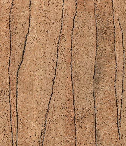 Korkstoff / Korkleder: Div. Designs, Möbelbezug, Kissenbezug, Bezugsstoff, Lenkradbezug, veganes Leder (div. Größen) (35x25, Cactus)