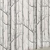 Loopsd Wand der Birke Schwarz und Weiß 3D-geprägte Tapeten(33'x 20,5 WP04801 Schwarz und Weiß)