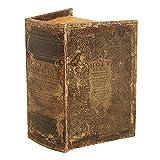 zeitzone Hohles Buch mit Geheimfach THE HOLY BIBLE Buchversteck Bibel