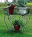 Pflanzenständer Metall schwarz,1 Stück von Baldur-Garten - Du und dein Garten