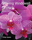 Growing Windowsill Orchids (Kew Growing)