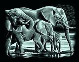 Mammut 137001 - Kratzbild silber - Elefanten