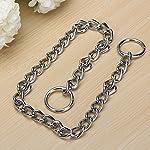 Kungfu Mall Pet Strong Steel Metal Training Pet Choker Chain Collar (L) 16
