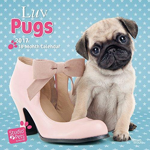 luv-pugs-studio-pets-2017-wall-calendar
