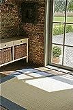 F & S MADEIRA 160 x 230 cm azul beige alfombra moderna Flat Weave en aspecto de Sisal para sala de estar, dormitorio, pasillo, oficina, balcón y patio. Para uso INTERIOR y EXTERIOR. Fabricado en EUROPA OCCIDENTAL