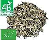 Tè verde Menta piperita BIO 200g