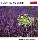 Farben der Natur - Kalender 2019: Kalender mit 53 Postkarten -