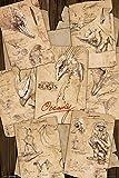 GB eye LTD, Animales fantásticos y dónde encontrarlos, Notas del Terreno, Maxi Poster 61 x 91,5 cm
