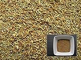 Tanaisie - 1000 graines - Tanacetum Vulgare - Tansy - ...