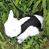 [Gesponsert]Kaka Mall Verstellbar Geschirr für Hase Katzen Weich Gepolstert Katzengeschirr Kaninchen Geschirr mit Nylon Leine(S,Schwarz)