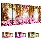 Bilder 200 x 80 cm - Wald Allee Bild - Vlies Leinwand - Kunstdrucke -Wandbild - XXL Format - mehrere Farben und Größen im Shop - Fertig Aufgespannt !!! 100% MADE IN GERMANY !!! - 605655a