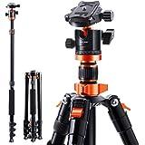 K&F Concept Treppiede Treppiedi Fotocamera Portatible 200cm con Monopiede 205cm, Chiodo di Piedini, 360°Testa a Sfera Panoram