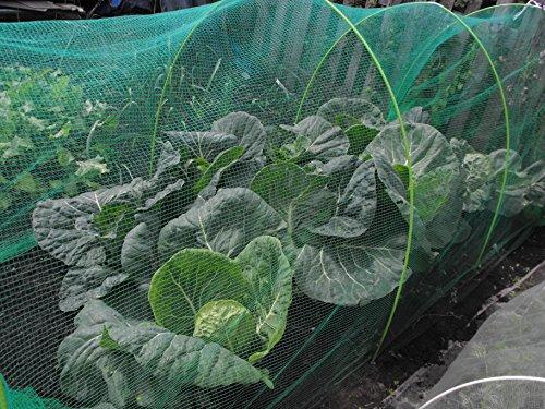 Filet anti papillon 3 m de large 4-5 mm en maille filet taille en polyéthylène 3m x 6m vert