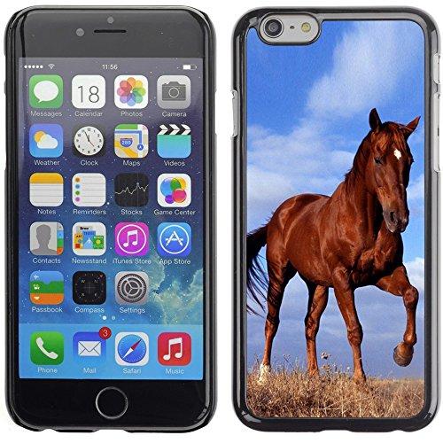 Graphic4You Pferd Tier Design Harte Hülle Case Tasche Schutzhülle für Apple iPhone 6 Plus / 6S Plus Design #4