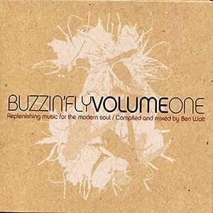 Buzzin' Fly Volume 1 - Mixed by Ben Watt