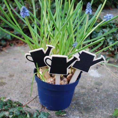 lot-de-trois-etiquettes-a-planter-en-bois-ardoise-en-forme-darrosoir-45