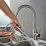Robinet de Cuisine Mitigeur | LONHEO Robinet salle bain avec douchette 2 Jets au...