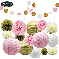 KUNGYO Tissue Paper Pom Poms Kit Flowers Paper Lanterns and Polka Dot Paper Garland for Wedding Party Decorations 16 PCS (Pack:16PCS)