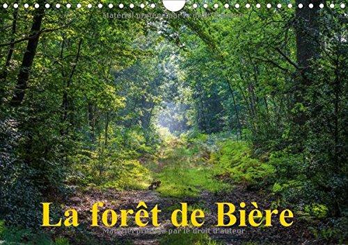 La foret de Biere 2016: Paysages de la foret de Fontainebleau (Calvendo Nature)