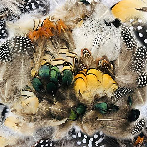 FHzytg 270 Stück Naturfeder Deko Federn 7 Verschiedene Federn Basteln für Traumfänger Hochzeit Geburtstag Party Masken Hüte Tanzkleidung Halloween Dekoration