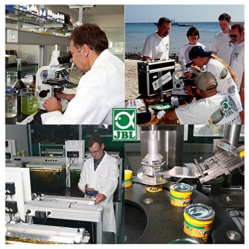 JBL 1007600 Heilmittel gegen Samtkrankheit für Aquarienfische, Oodinol Plus 250, 100 ml