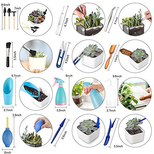 14 PCS/Set Saftig Boden Mix Dünger Transplantation Pflanzung Garten Mini Eimer Schaufel Werkzeuge -