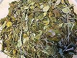Moringa Blätter - Vitamine + Nährstoffe pur - Futter für Garnelen, Krabben und Krebse & Co