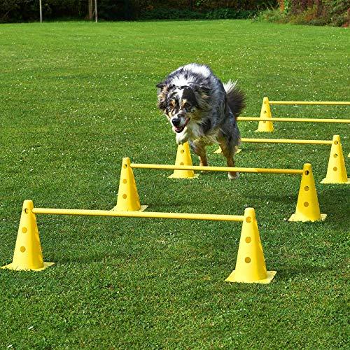Superhund24 Kegel-Hürden 5er Set, gelb/gelb, mit Tragetasche, für Agility-Training
