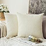 MIULEE 2er Set Kordsamt Soft Solid Dekorative Quadrat Wurf Kissenbezüge Set Kissen Fall für Sofa Schlafzimmer Auto 18 * 18 Zoll 45 * 45 cm
