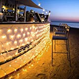 Ollny Led Net Mesh Fairy String Decorative Lights - Christmas Tree-wrap Wedding Garden Home Outdoor Decorations Lights Low Voltage 200 LEDs 8 Modes 2m*3m(Warm White Light)