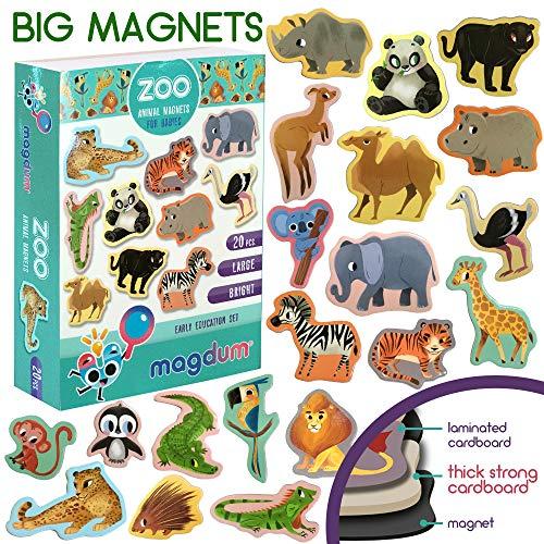 MAGDUM Imanes Animales Zoo de Pizarra Infantil para niños - Imanes Nevera...