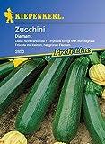 Zucchinisamen - Zucchini Diamant von Kiepenkerl