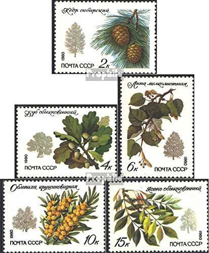 soviet-unione-5002-5006-completaproblema-1980-alberi-e-arbusti-francobolli-