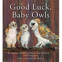 Good Luck, Baby Owls!