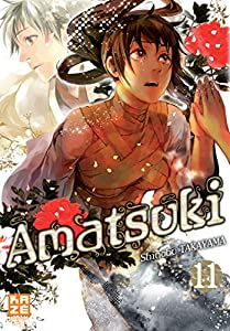 Amatsuki Edition simple Tome 11