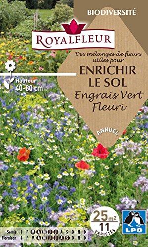 royalfleur-pfrf08795-graines-de-fleurs-utiles-pour-sol-engrais-vert-fleuri-25-m
