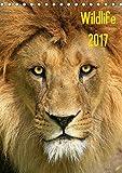 Wildlife 2017 (Tischkalender 2017 DIN A5 hoch): Wildlife-Fotografie (Monatskalender, 14 Seiten ) (CALVENDO Tiere)