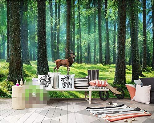 Ponana Hd Grüne Tapeten Grüne Kiefer Bäume Sunny Landscape Dekorative Tapete Wandbild3D Tapete-400X280Cm