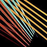 What Follows (2lp+Mp3) [Vinyl LP]