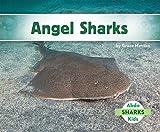 Angel Sharks (Sharks Set 2)