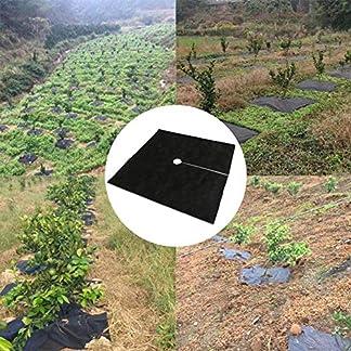 Cracklight 10PCS Cubierta de protección contra malezas transpirable e hidratante Tela de hierba de huerto no tejida Cubierta de suelo para control de malezas adorable