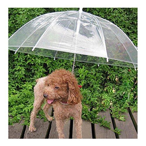 Sotoboo Paraguas para Mascotas (Paraguas para Perro/Gato), Correa de Perro, Transparente, Impermeable, Paraguas para Mascotas para Paseos Secos en la Lluvia, Nieve