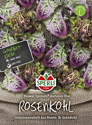 Rosenkohl Flower Sprout® Autumn Star