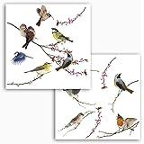 Komar - Windowsticker BIRDS - 31 x 31 cm - raamdecoratie, raamsticker, raamfolie, vogel, blauwe beits, vintage - 16003, bont