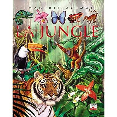 Les Animaux de la jungle : Pour les faire connaître aux enfants