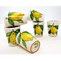 n. 6 Bicchierini Limoncello Linea Limoni Realizzati e dipinti a mano Le Ceramiche del Castello Made in Italy dimensioni…