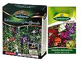 Schmetterlingstreffpunkt | Blumenwiese | 1x Kamelien-Balsaminen kostenlos (schneckenresistent)