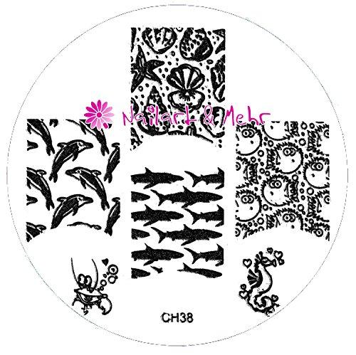 Pochoir de stamping # ch de 38 ~ poissons, coquillages, Dauphins, cheval de mer, le Cancer ~