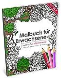 Malbuch für Erwachsene: Zauberhafter Märchenwald (Kleestern®, A4 Format, 40+ Motive) (A4 Malbuch für Erwachsene)