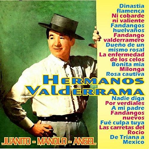 Dinastia Flamenca